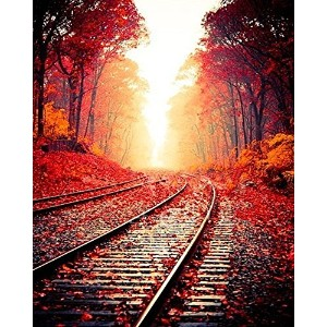 Tianmai新しいペイントby Numberキット–Maple Leaves Charming Railway 16x 20inchリネンキャンバスPaintworks–...