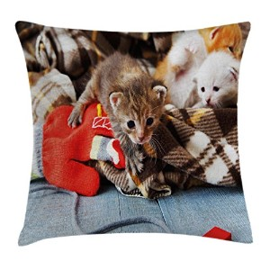 Catsスロー枕クッションカバーby Ambesonne、Kittens and Mittens Newborns Baby Animals in an Plain Blanket木製Playおもちゃ...