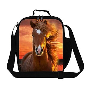 CrazyTravel Reusable Lunch Box Bags Thermocoolers Men Women Kids' Lunch Bags for Work School by...