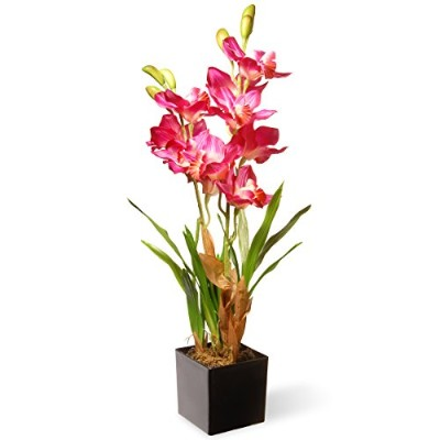 Nationalツリー会社Potted Orchidsシルク花–ピンク ブラック NF36-5289S