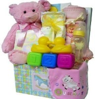 Art of Appreciation Gift Baskets Sweet Baby Care Package-Girl by Art of Appreciation Gift Baskets