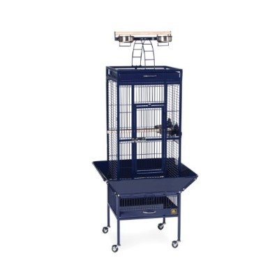 Prevue Pet Products 3151BLUE Wrought Iron Select Cage - 18 in. x 18 in. x 57 in. Cobalt Blue
