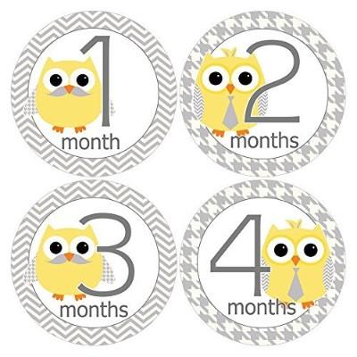 Gift Set of 12 Round Keepsake Photography Monthly Baby Stickers with Owls in Yellow and Gray...