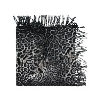 Saint Laurent animal print scarf - ブラック