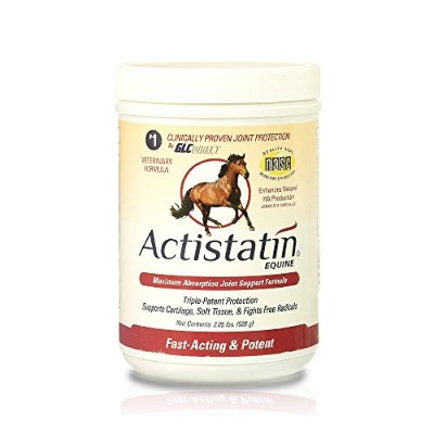 Actistatin Equine 2.05 pound (928g) Equine Powder by GLC Direct