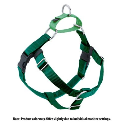 Freedom No-Pull Harness 1 Inch Width XLarge Green by Wiggles Wags Whiskers