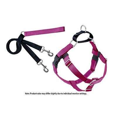 Freedom No Pull Harness and Leash Training Kit Raspberry Large by 2 Hounds
