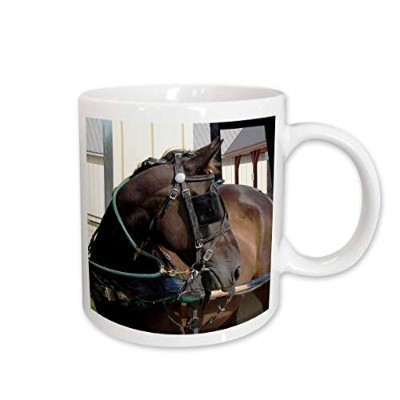 (440ml) - 3dRose Amish Horse Photographed by Angelandspot Ceramic Mug, 440ml