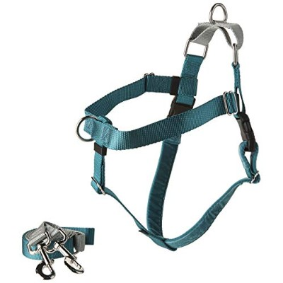 Freedom No-Pull Dog Harness Training Package with Leash, Teal Large by Wiggles Wags Whiskers