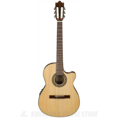 Ibanez GA30TCE-NT (Natural High Gloss) (クラシックギター/エレガット)(送料無料)(納期未定・ご予約受付中)