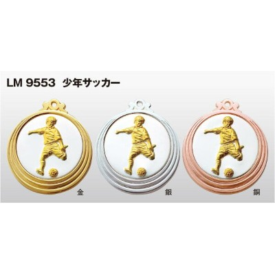 LMCPメダル53mm (高級別珍ケース入り) LM9553V/A-1