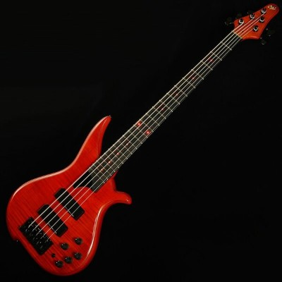 "TUNE TWB-5EX ""Flame Maple Top""22F/LED (Twilight Red)"