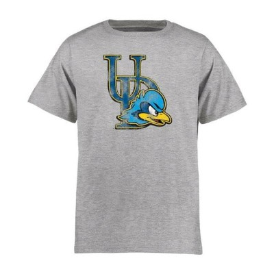 Delaware Fightin' Blue Hens Youth Ash Classic Primary T-Shirt キッズ