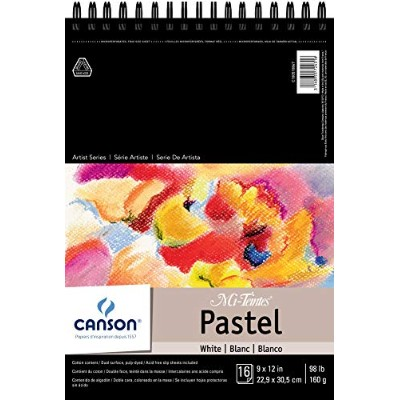 Mi-Teintes Pastel Pad, White with Glassine 9X12 Top Wire by Canson