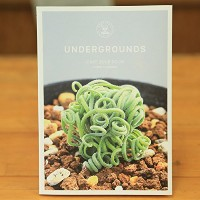 UNDERGROUNDS -CAPE BULB BOOK-