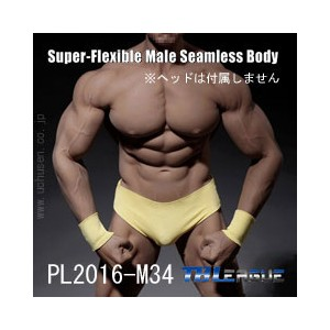 【TBLeague】PL2016-M34 male super flexible seamless body with metal skeleton TBリーグ 1/6スケール シームレス男性ボディ...