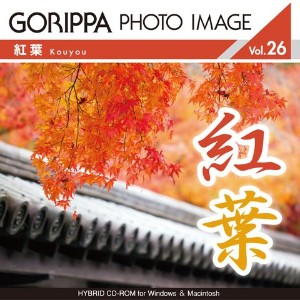 GORIPPA PHOTO IMAGE vol.26「紅葉」
