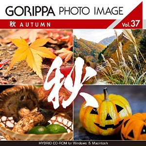 GORIPPA PHOTO IMAGE vol.37 「秋」