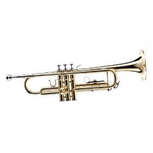 WD-T311 Bb Trumpet with Case and Mouthpiece Bb トランペット Hawk社 Gold【並行輸入】