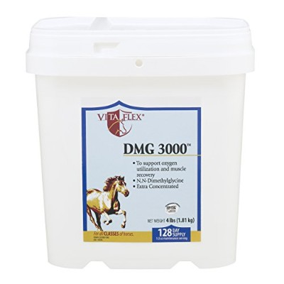 Vita Flex, DMG 3000 Concentrate - 4lbs, 128 Day Supply by Vita Flex