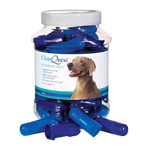ClearQuest Finger Brush Canisters - Convenient Toothbrushes for Cleaning Pets' Teeth, by ClearQuest