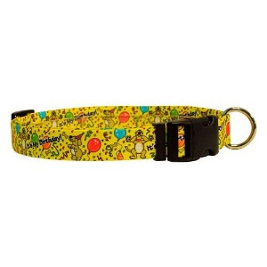 Yellow Dog Design M-HB101S Happy Birthday Martingale Collar - Small