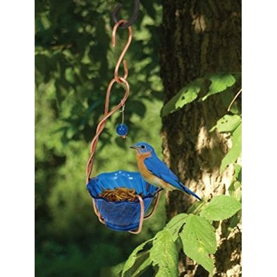 Songbird Essentials SEHHBBMW Copper Bluebird Mealworm Feeder