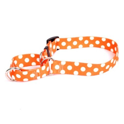 Tangerine Polka Dot Martingale Control Dog Collar - Size Extra Small 10 Long - Made In The USA by Yellow Dog Design