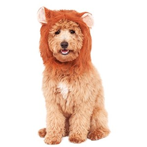 Rubies Costume Company Lion's Mane Costume Accessory for Pets, Medium/Large by Rubie's Costume Co