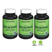 3本セット 天然 クロロフィル 600mg Natural Chlorophyll Organically Grown Alfalfa Supplement 海外直送品