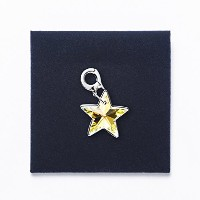 [SWAROVSKI] Crystal Double Star Charm 1161142 [並行輸入品]