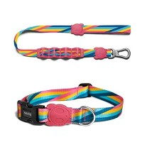 zee.dog(ジードッグ) 首輪(L)とラフリード(L)のセット 大型犬向け BOWIE_COLLARS(L) BOWIE_LEASH(L)