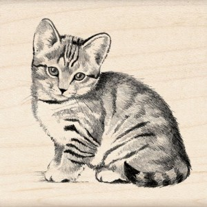 "Inkadinkado Mounted Rubber Stamp 2.25""X2.25""-Little Kitten (並行輸入品)"