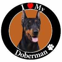 I Love My Doberman Car Magnet With Realistic Looking Doberman Photograph In The Center Covered In...