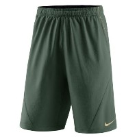 Baylor Bears Nike Fly XL 5.0 Performance Shorts メンズ Green NCAA ナイキ バスパン カレッジ