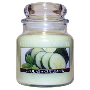 A Cheerful Giver 'Cool As A Cucumber' Jar Candle, 16-Ounce [並行輸入品]