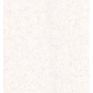 Brewster 431-7253 Techniques and Finishes II Painted Effect Wallpaper, 20.5-Inch by 396-Inch, Neutral [並行輸入品]