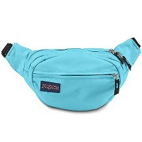 jansport(ジャンスポーツ) FIFTH AVENUE MammothBlue