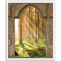 JP London POSLT0064 uStrip Lite Removable Wall Decal Sticker Mural Game of Thrones Mystic Forest...