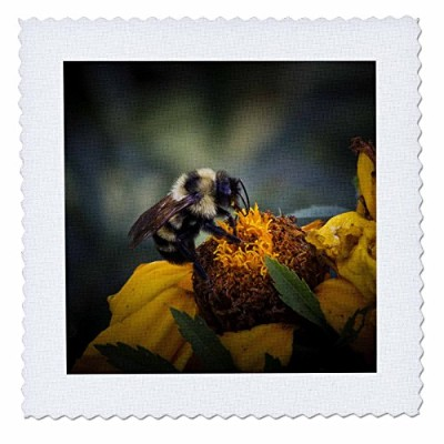 Angel Wingsデザイン一般Wildlife – 鳥 – Wild Flower with Bumble Bee Helping One Another – Close Upイメージwith...
