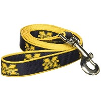 Sporty K9 Collegiate Michigan Wolverines Dog leash, Large - New Design by Sporty K9