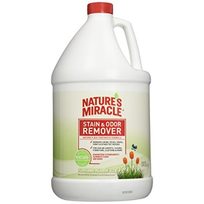 Nature's Miracle Stain & Odor Remover, Flowering Meadow Scent, Gallon (P-5795) by Nature's Miracle