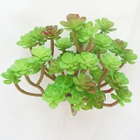 Lily Garden All Kinds of Green Artificial Succulent Plants (G) by Lily Garden