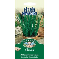 HE 英国ミスターフォザーギルズシード HERB GARDEN Chives チャイブ