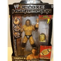 WWE/WWF デラックス アグレッション プロレス フィギュア Deluxe Aggression Series 22 Triple H