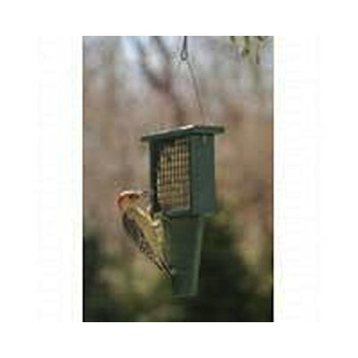 "Songbird Essentials SERUBSF100H 11.3"" x 2.5"" x 7.5"" Suet Feeder with Tail Prop"