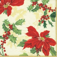 Ideal Home Range 紙ナプキン COCKTAIL NAPKINS C24060