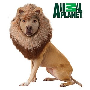 California Costume Collections Animal Planet Lion Dog Costume, X-Small by California Costumes