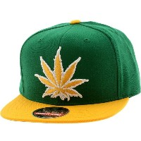 アメリカンニードル American Needle 帽子 キャップ【American Needle Experience Washington Legalized Cap 】