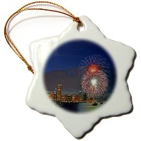 3drose Danita Delimont – Holidays – Il、シカゴ、7月4日Holiday Fireworks – us14 rgo0280 – ラッセルGordon –...